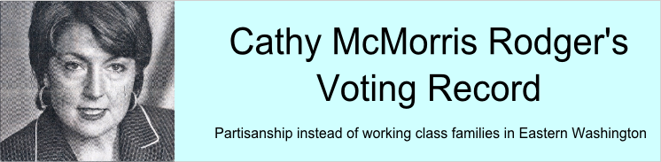 Banner (McMorris Voting Record)2